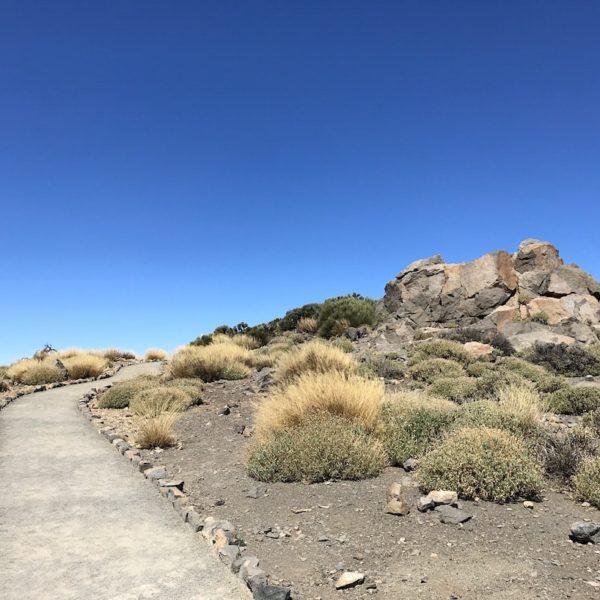 Wandern Nationalpark Teide Weg