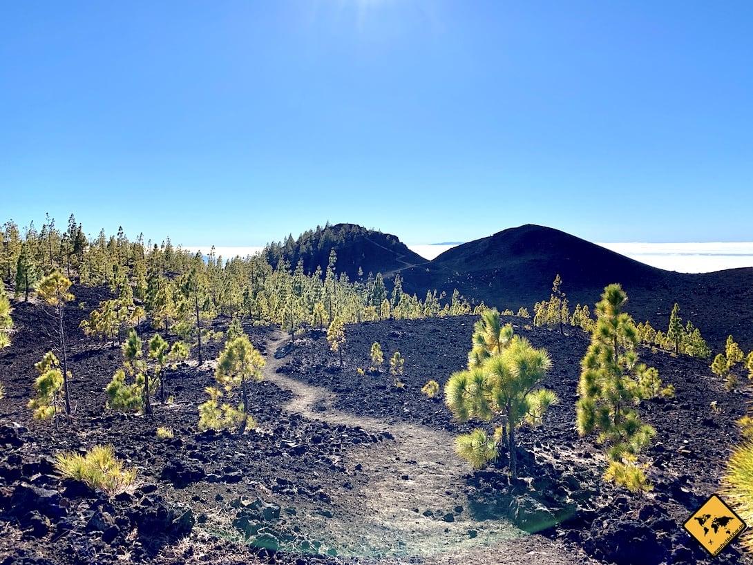 Wandern Teneriffa oder Gran Canaria
