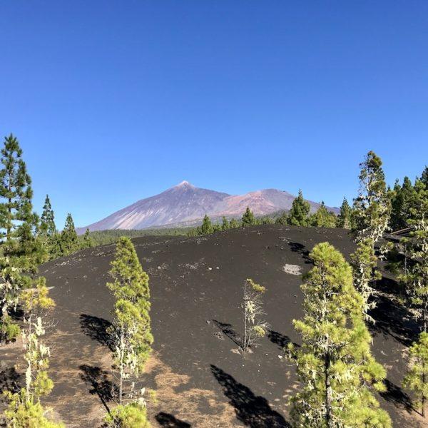 Wandern auf Teneriffa Chinyero Aussicht Teide