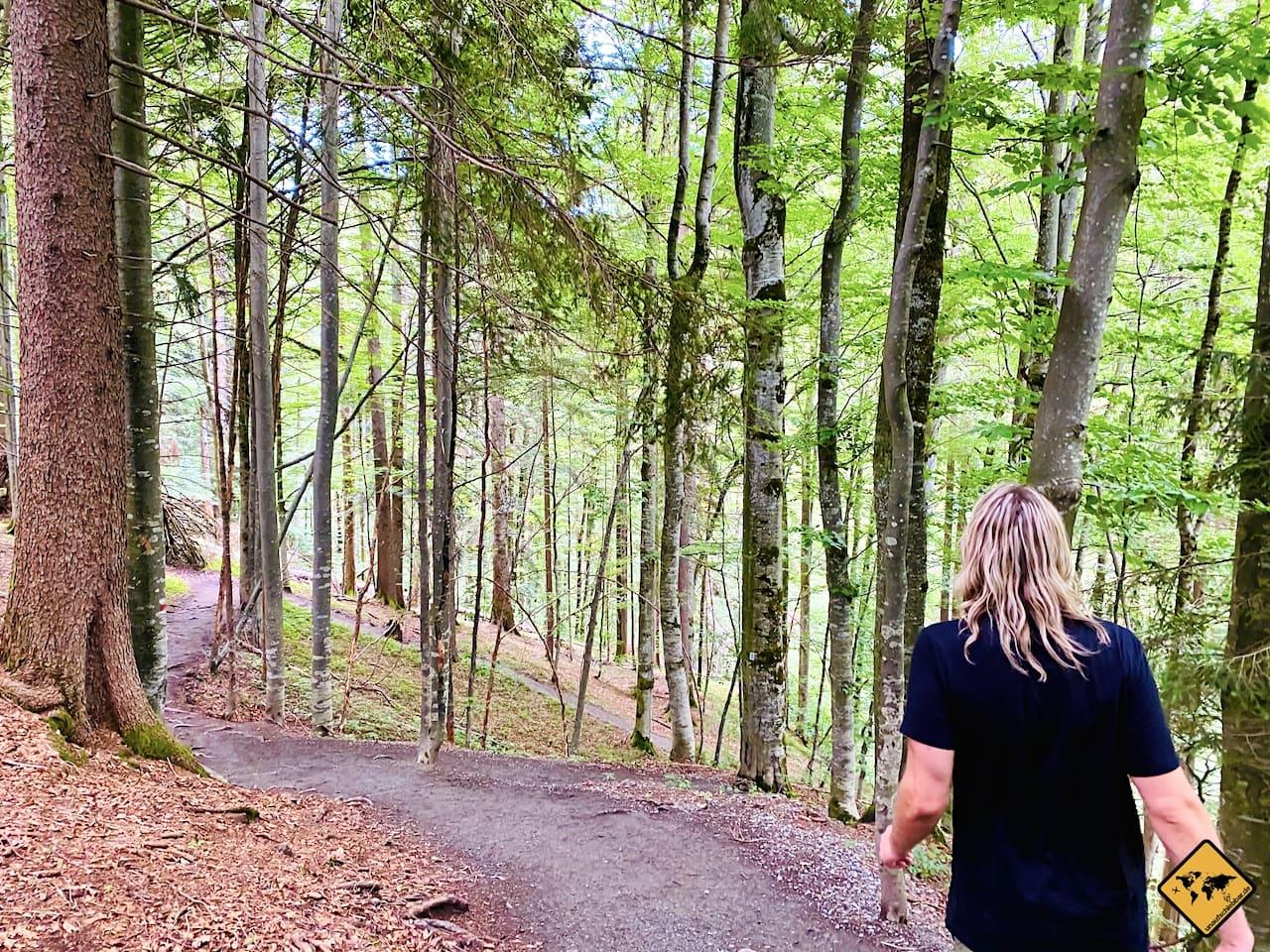 Wanderung Weg Buchenegger Wasserfälle