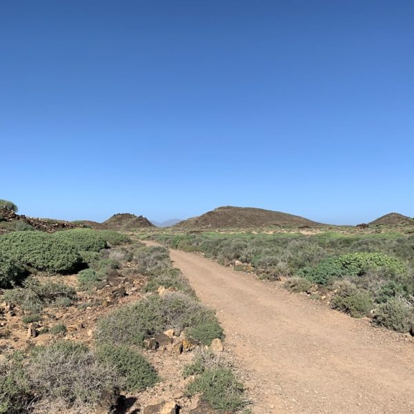 Wanderung Weg Isla de Lobos