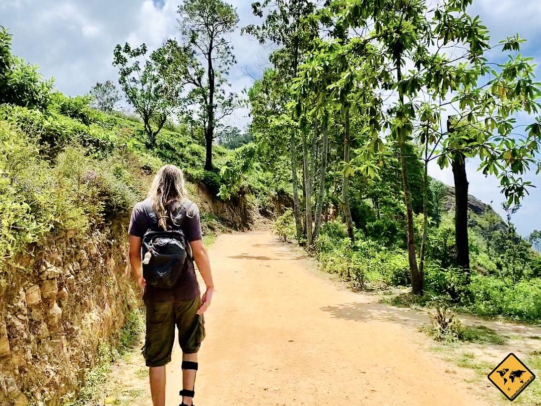 Wanderweg Little Adam's Peak Anfang