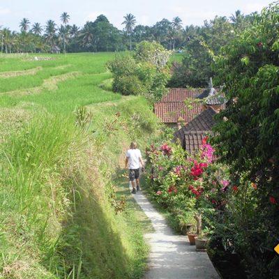 Wanderweg zum Fluss Ubud