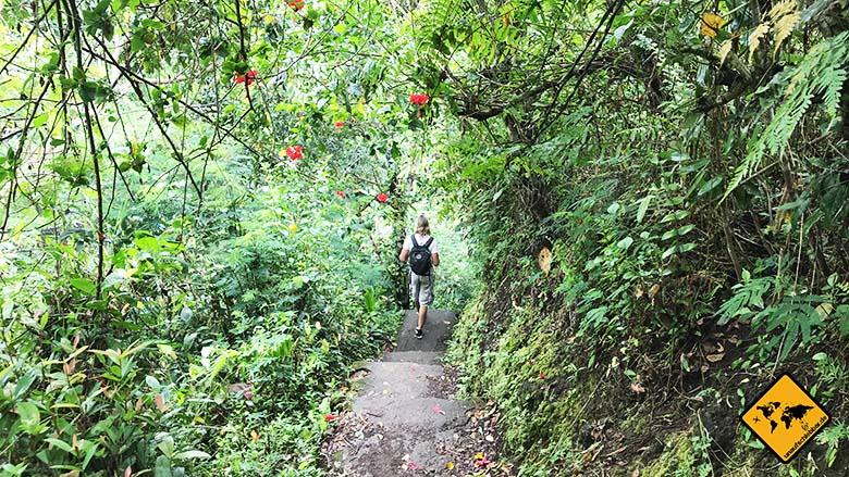 Wasserfall Bali Tukad Cepung Waterfall Weg