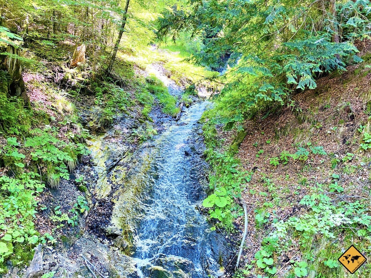 Wassergerinsel Weg Schloss Neuschwanstein
