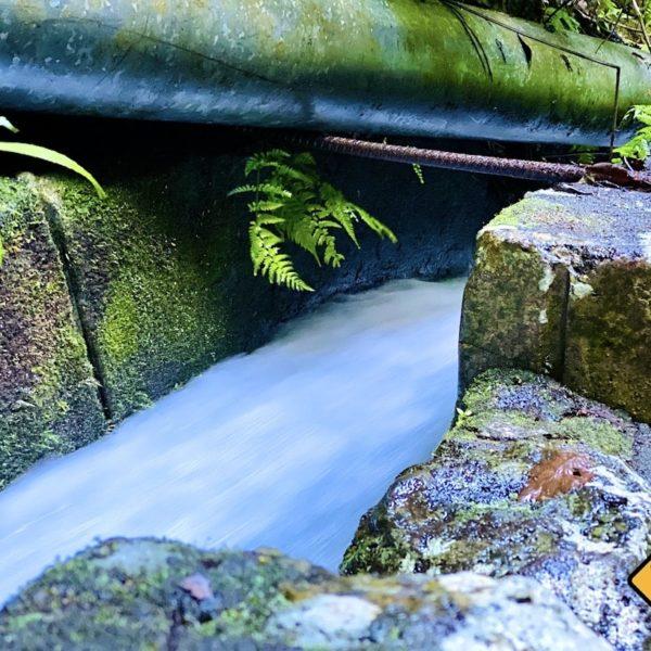 Wasserkanal Los Tilos La Palma