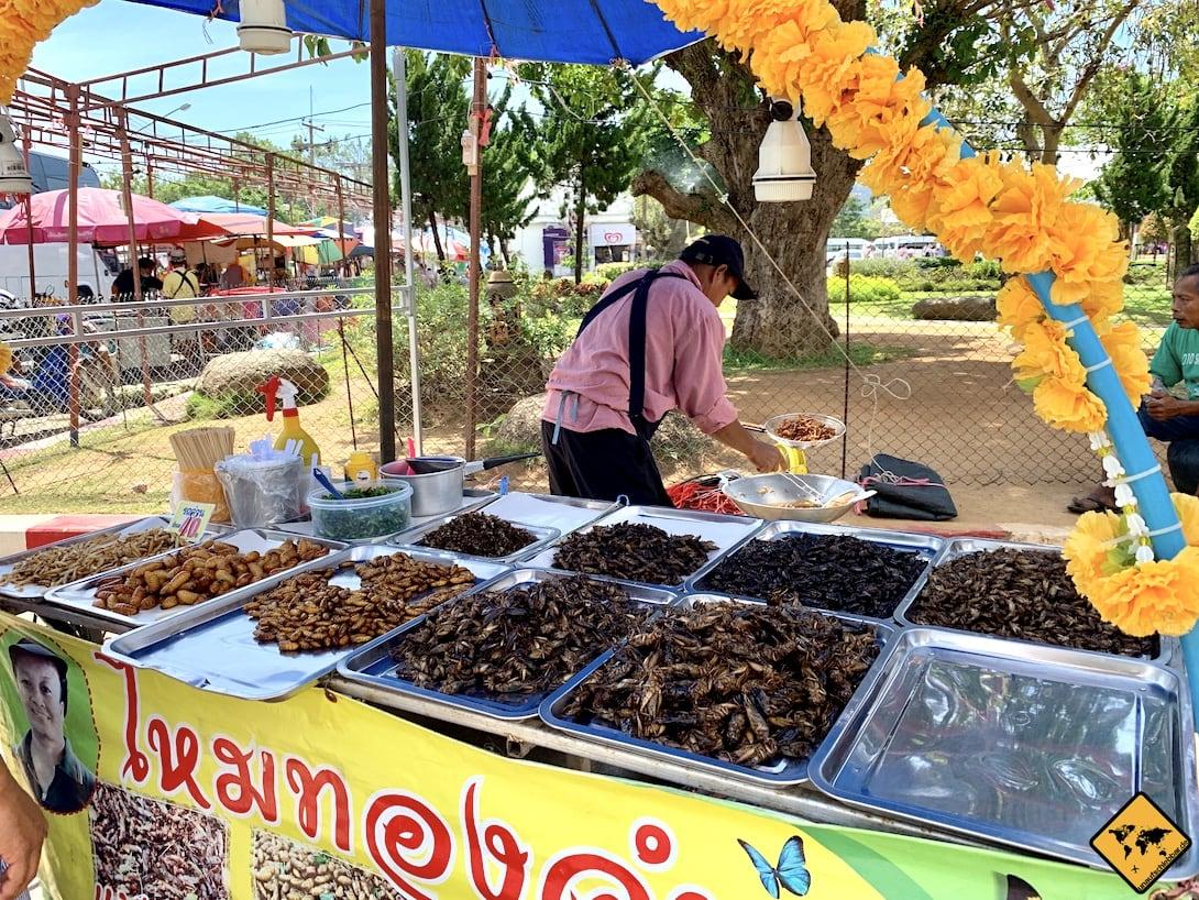 Wat Chaithararam Phuket Insekten