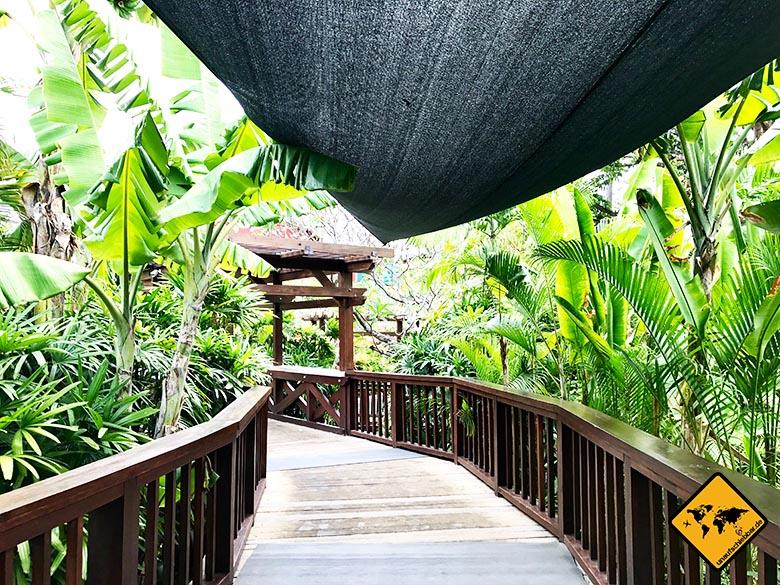 Waterbom Park in Bali