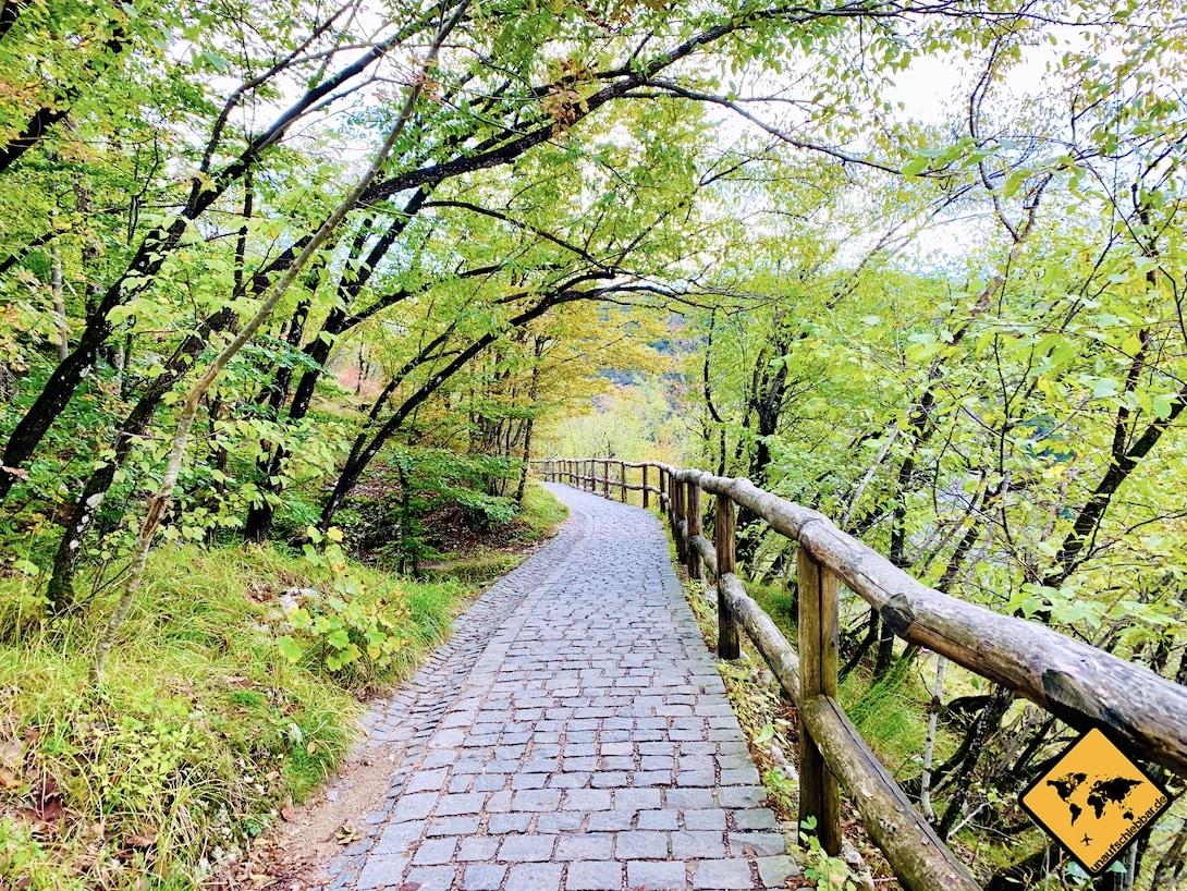 Weg Eingang 1 Nationalpark Plitvička jezera