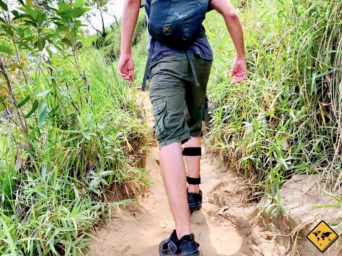 Weg Wanderung Little Adam's Peak Sri Lanka