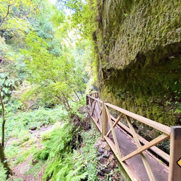 Weg Wasserfall Los Tilos La Palma