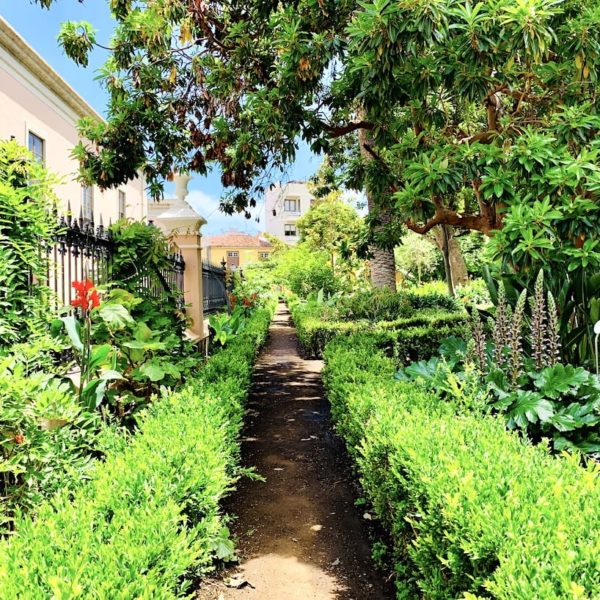 Weg botanischer Garten Hijuela del Botánico