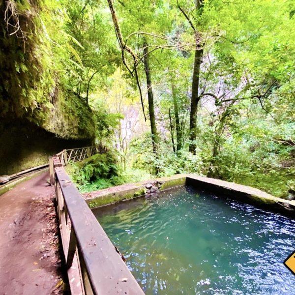 Weg zum Wasserfall glitschig