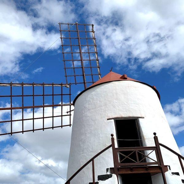 Windmühle Jardín de Cactus Lanzarote