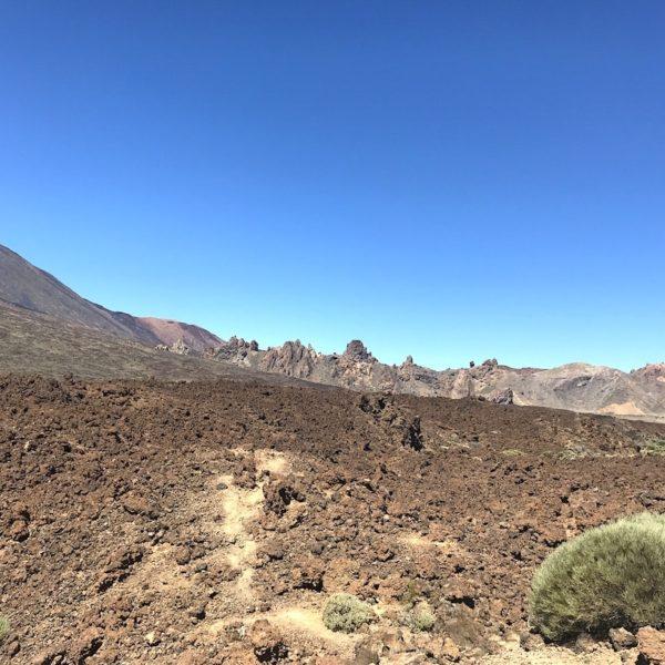 Zapato de La Reina Lava Teide Nationalpark