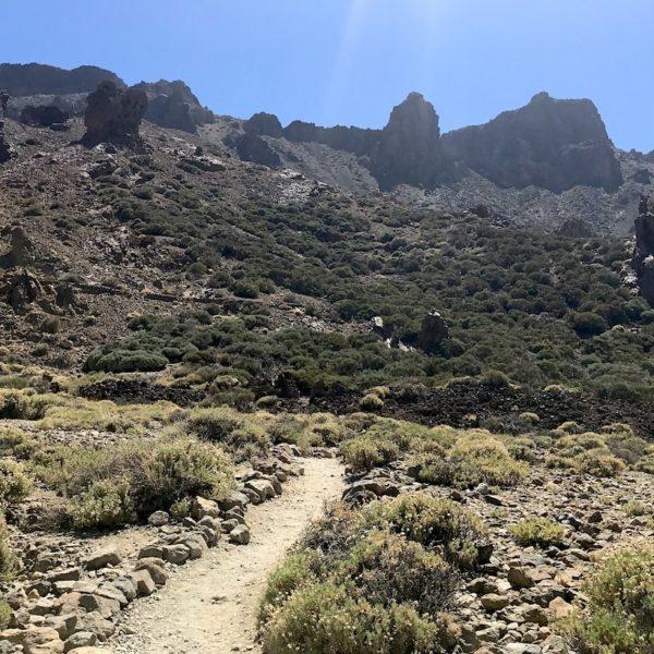 Zapato de La Reina Wanderweg Nationalpark Teide