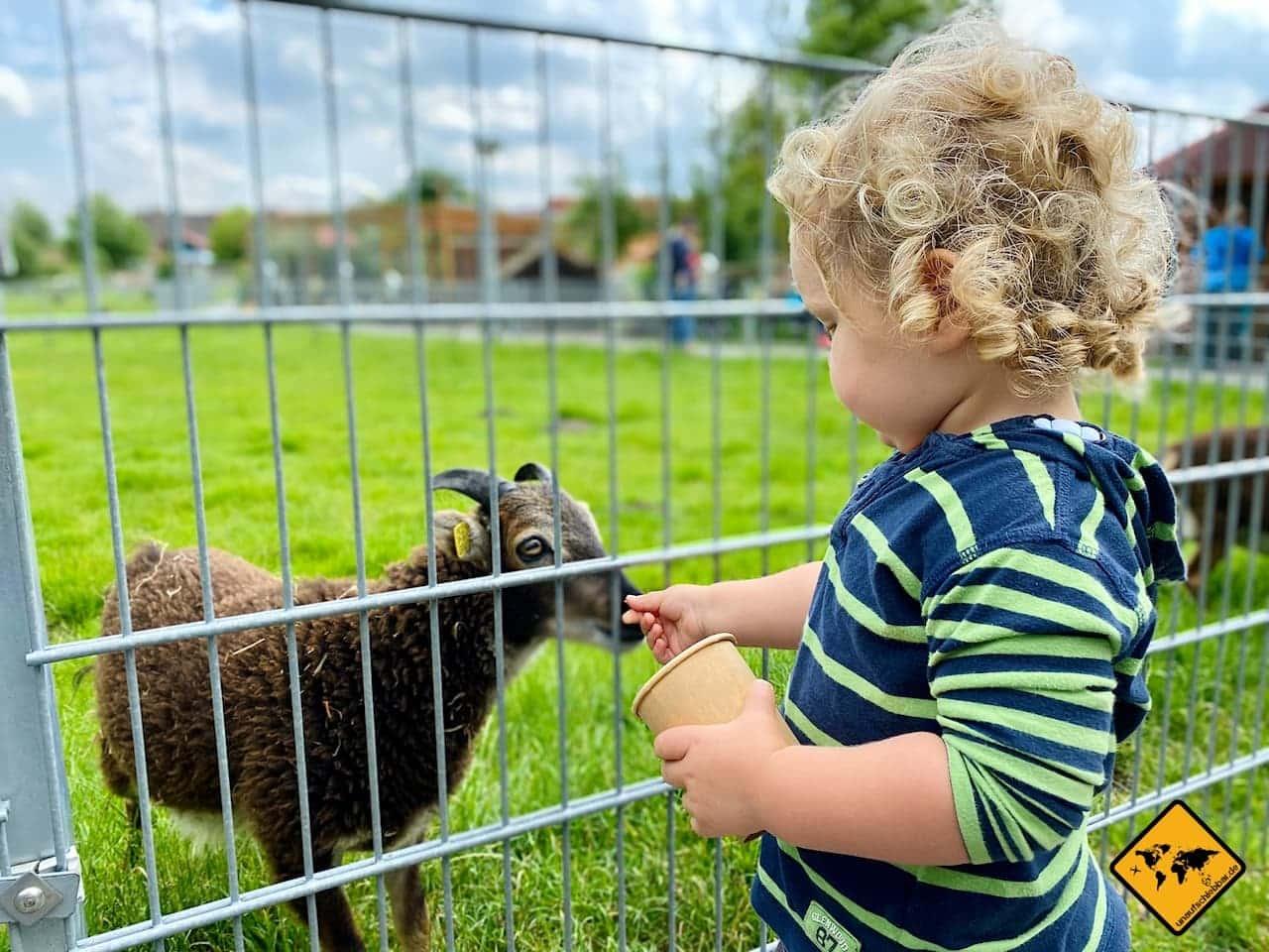 Ziegen füttern Tierpark Werdum