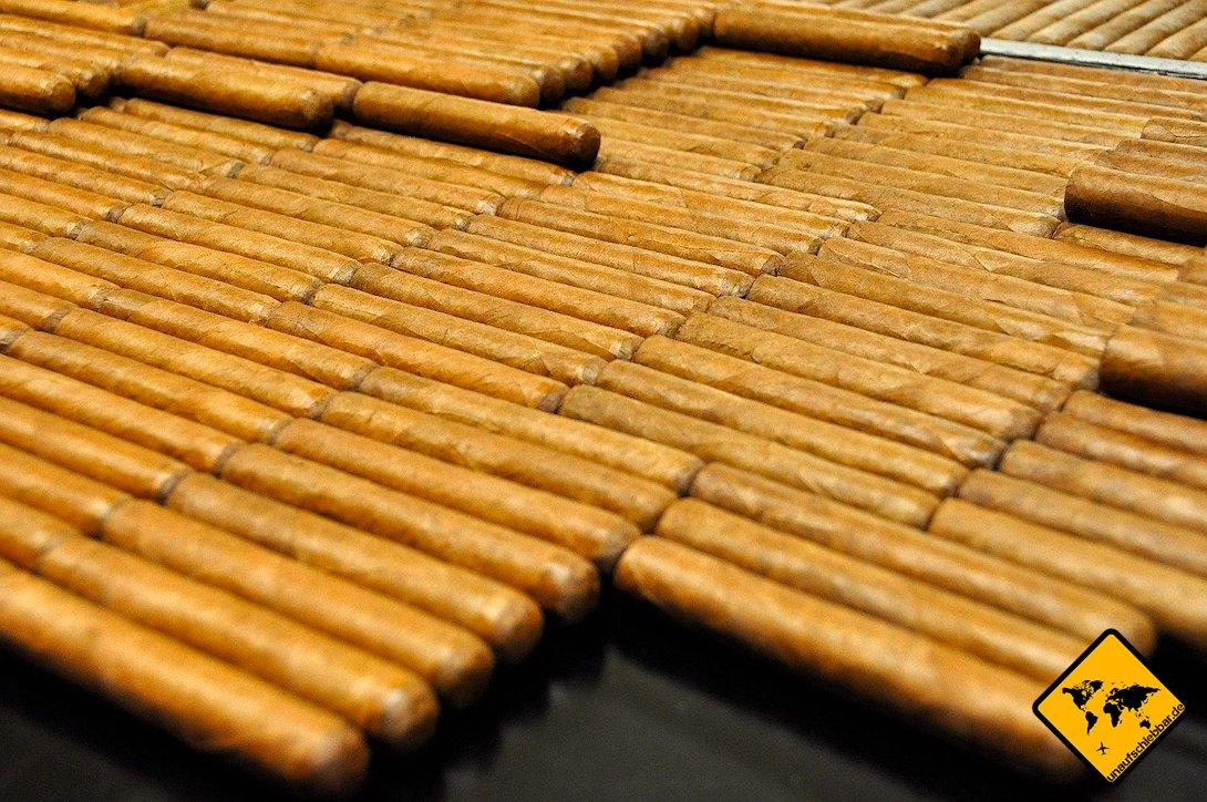 Zigarren La Palma