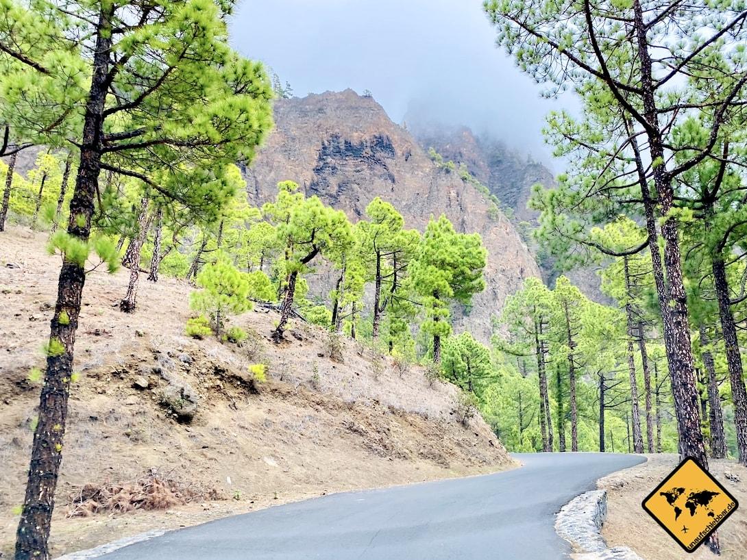 Zufahrtsstraße Mirador de la Cumbrecita