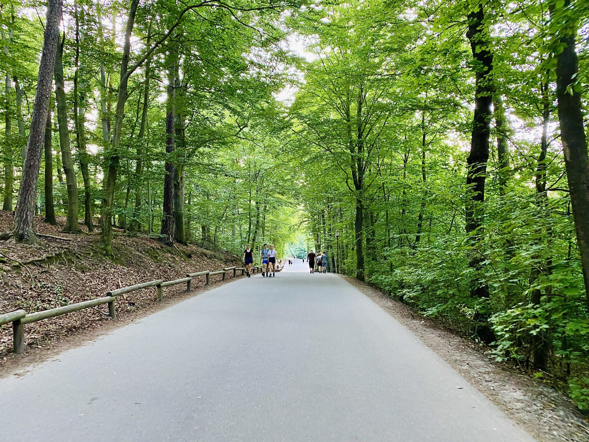 Zugangsweg Parkplatz Bastei