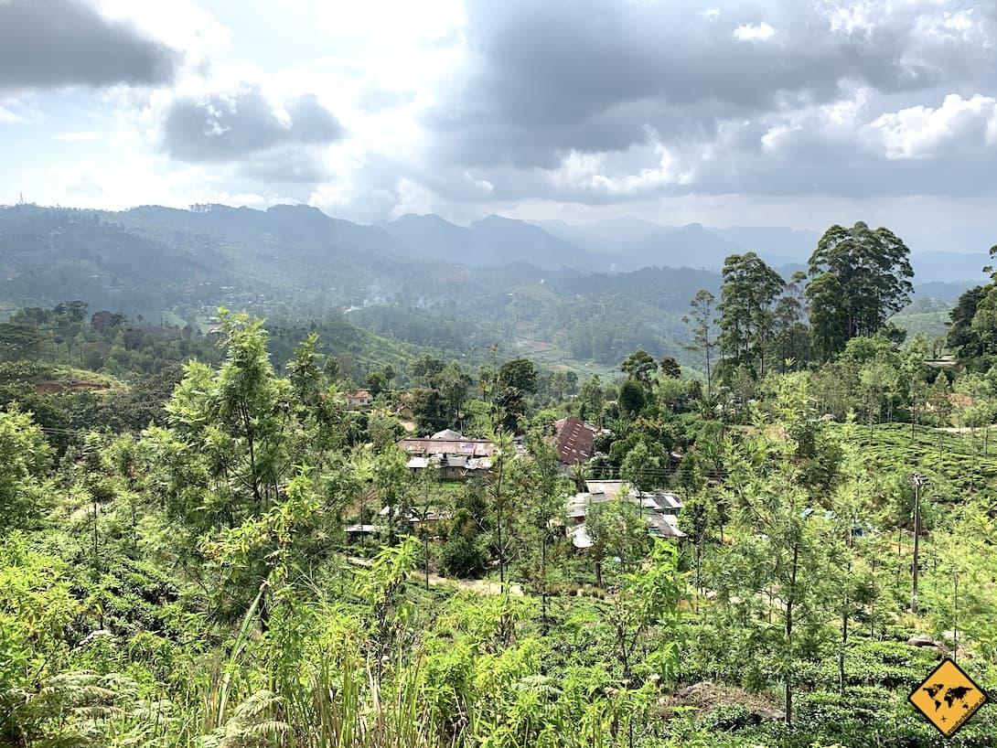 Zugfahrt von Kandy nach Ella Landschaft